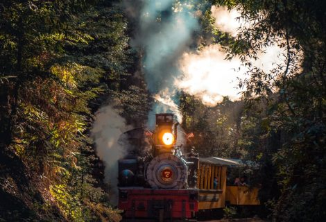 New Junior Ranger Railroad Program available through the National Parks Foundation
